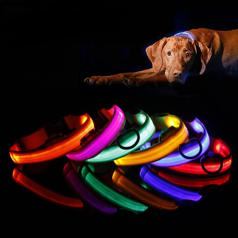 Nylon Pet Dog Collar Led Night Light-up di Sicurezza Flash